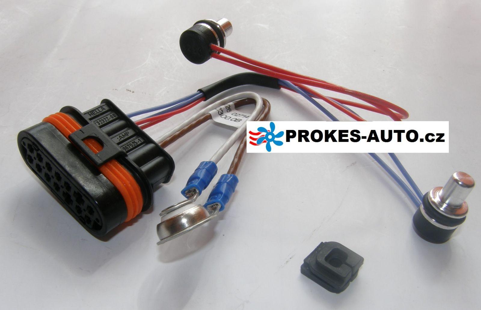 Svazek kabelů s čidlem pro D5WZ / D3WZ 251922012000 / 251922012100 / 251922012300 Eberspächer